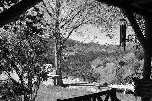 Zenklause Garten